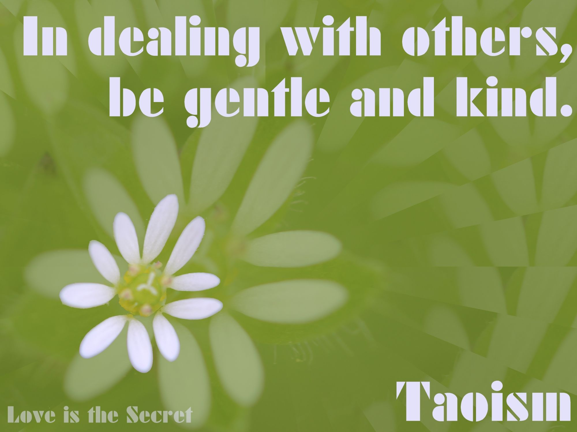 In dealing with others, be gentle and kind. In speech, be true. In ruling, be just. In business, be competent. In action, watch the timing. Taoism Source:http://www.katinkahesselink.net/other/tao-te-ching-quotes.html Photo by: Love is the Secret