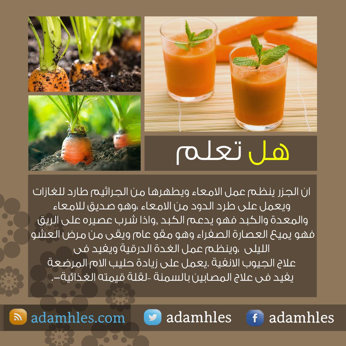 المصمم ادم حلس هل تعلم عن الجزر Natural Remedies Food And Drink Health