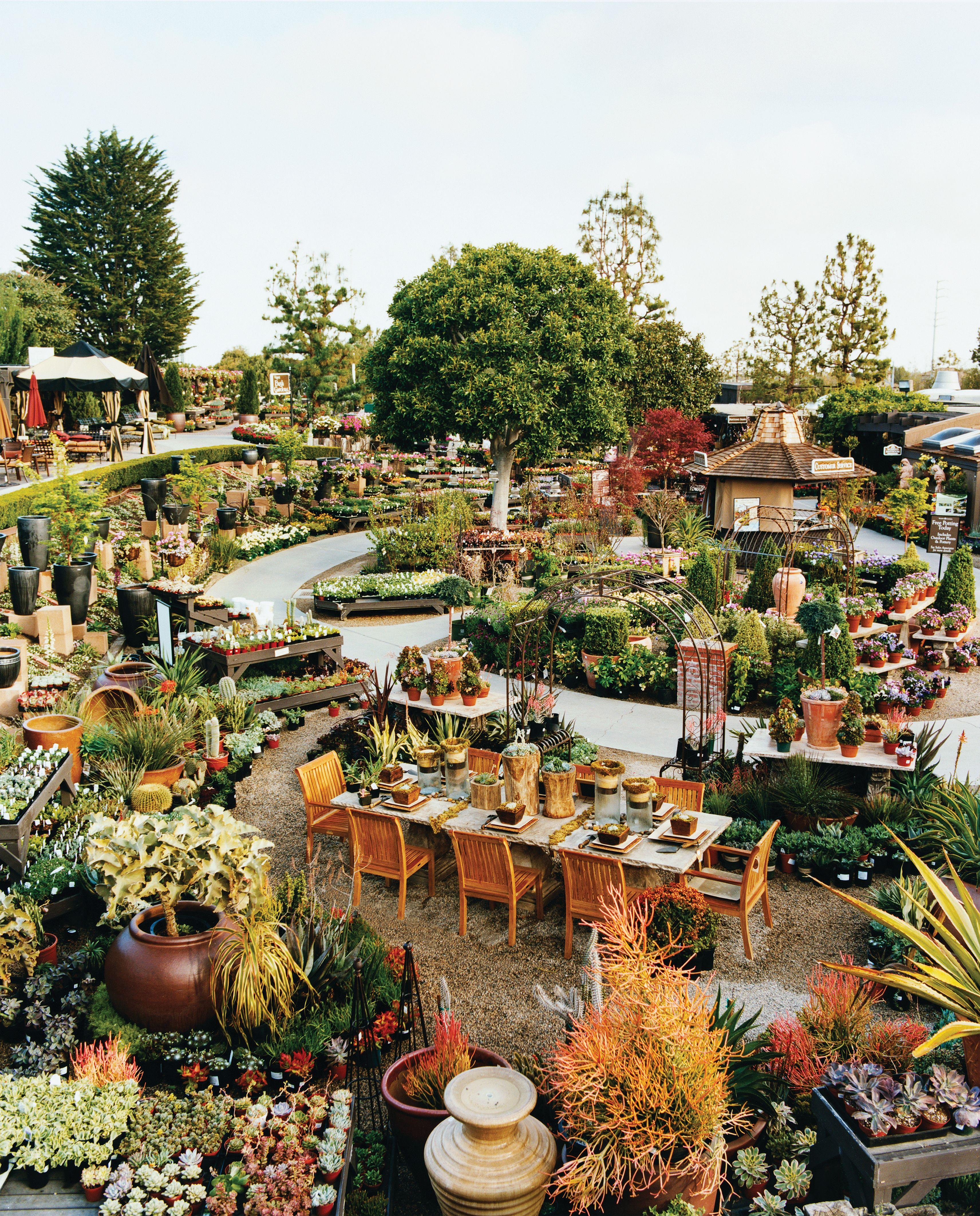 Great Spring Vacation Ideas Rogers gardens, Corona del