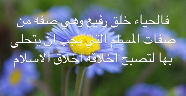 كلام عن الحياء والعفة وحكم وأشعار قوية جدا Flowers Plants Dandelion