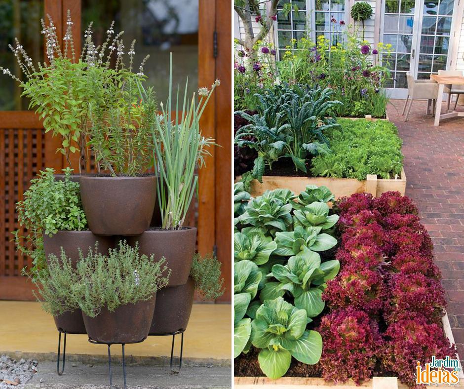 Todo mundo sabe que no inverno as plantas sofrem com falta ou a diminuição do sol. Para identificar se suas plantas estão passando por esse problema, você precisa ficar de olho em três sinais. Descubra quais são eles: http://bit.ly/1NXJ0pg