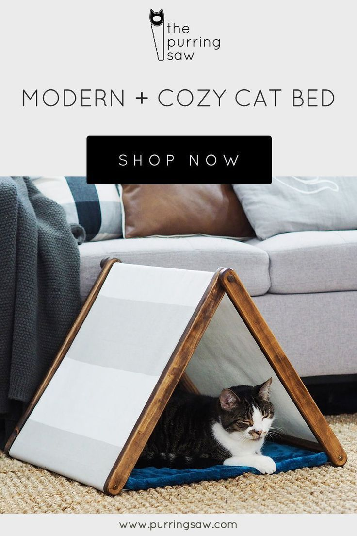 This modern and cozy cat bed will check off all your cat