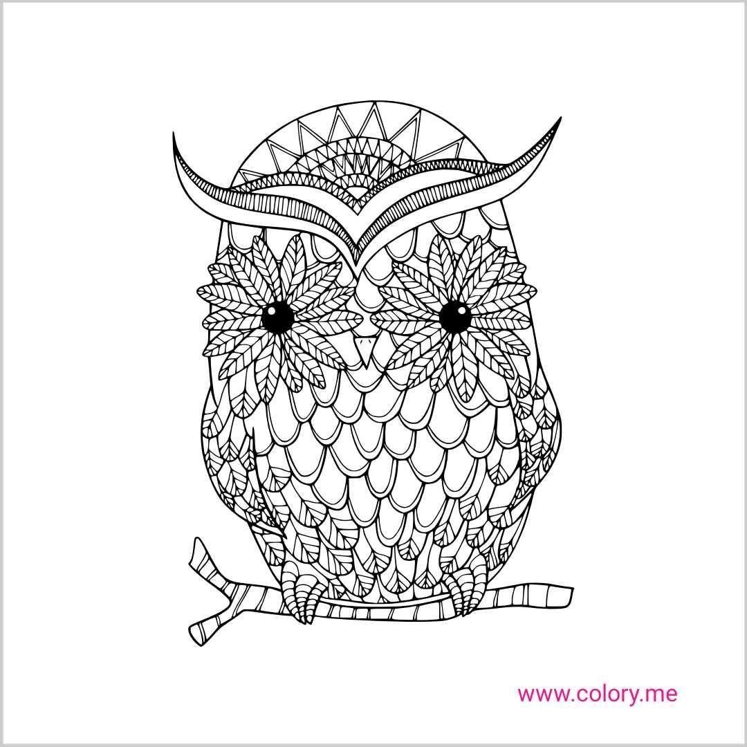 Pin Van Barbara Op Coloring Owl Kleurplaten Patronen Kleuren