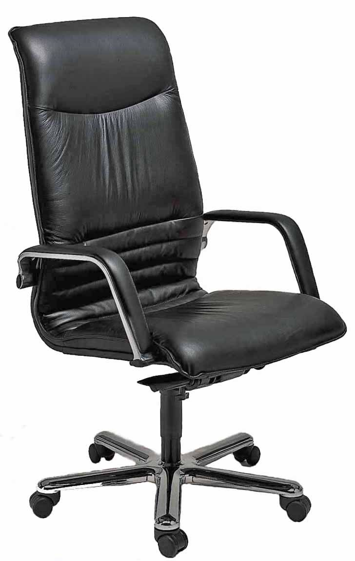 The World Famous 8 Hour Leather Chair Ergolinea By Name Ergonomic Nature
