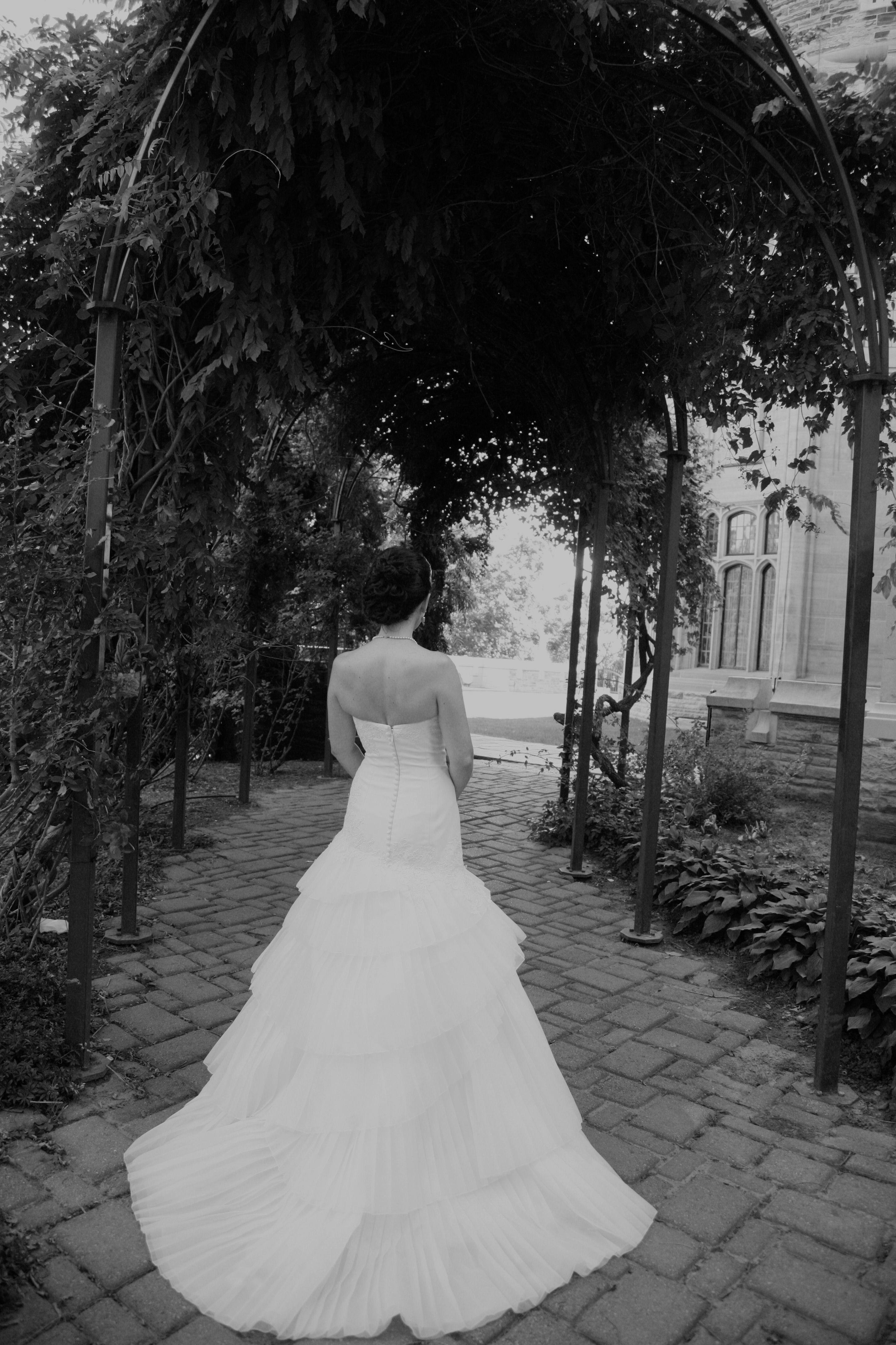 Vera wang wedding dress the big day pinterest vera wang