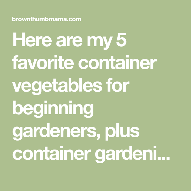 5 Best Container Vegetables For Beginning Gardeners Container