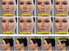 Nose Types Bing Images Nose Contouring Face Contouring Contour Makeup