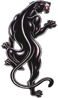 Panther tatoo