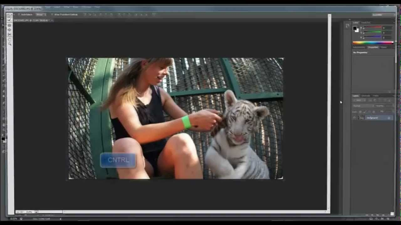 This video shows you how to change a photo's size and perspective.
