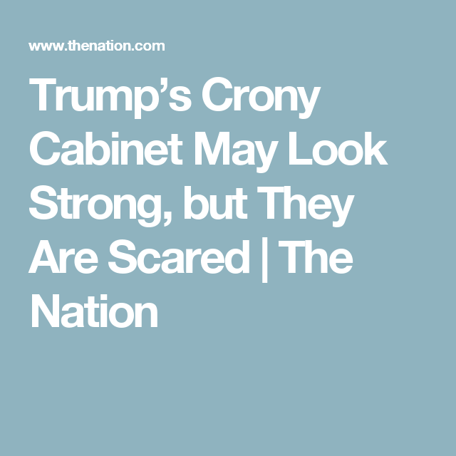 Trump's Crony Cabinet May Look Strong, but They Are Scared | The Nation