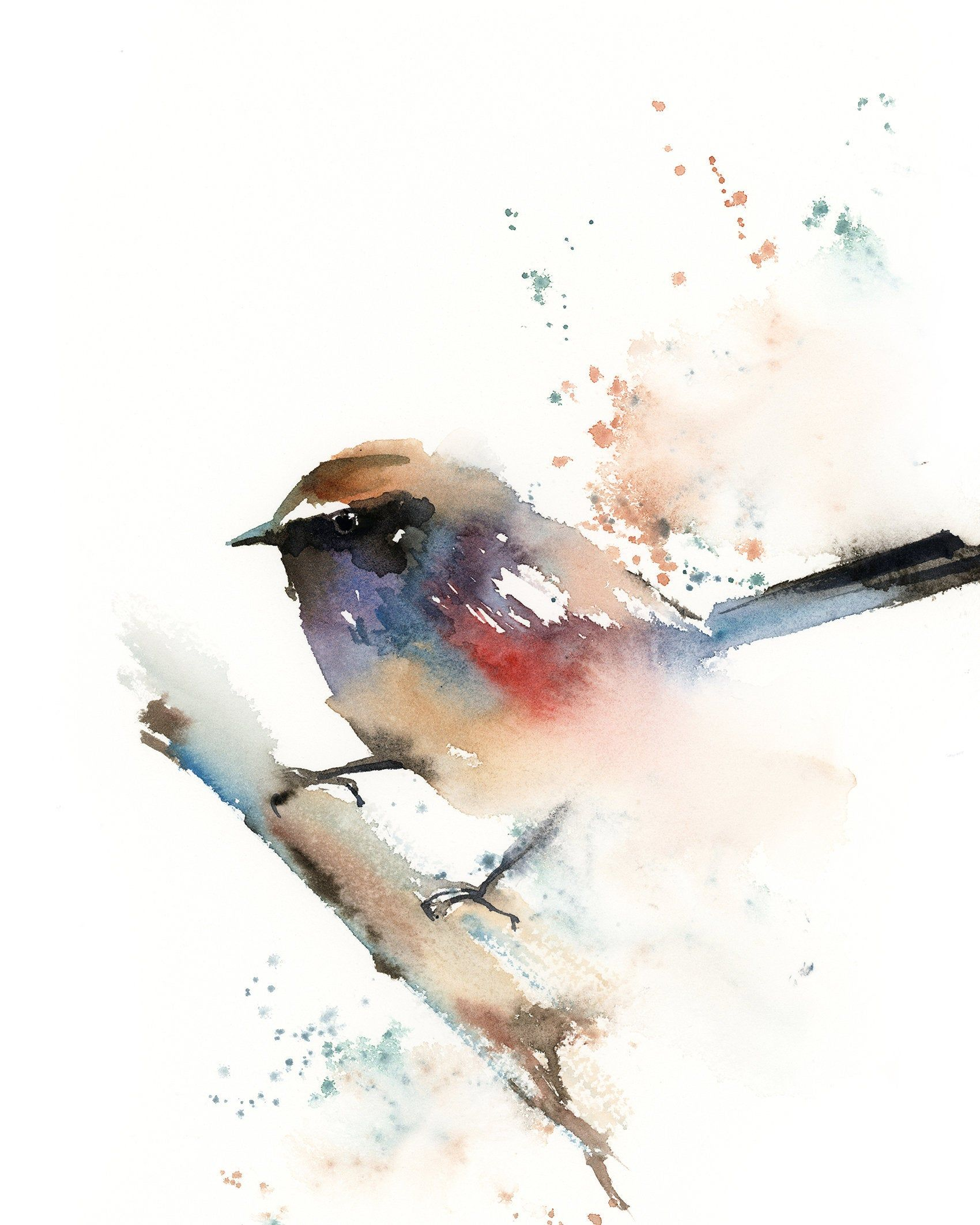 Colorful Wren Bird Fine Art Print Watercolor Loose Style Painting