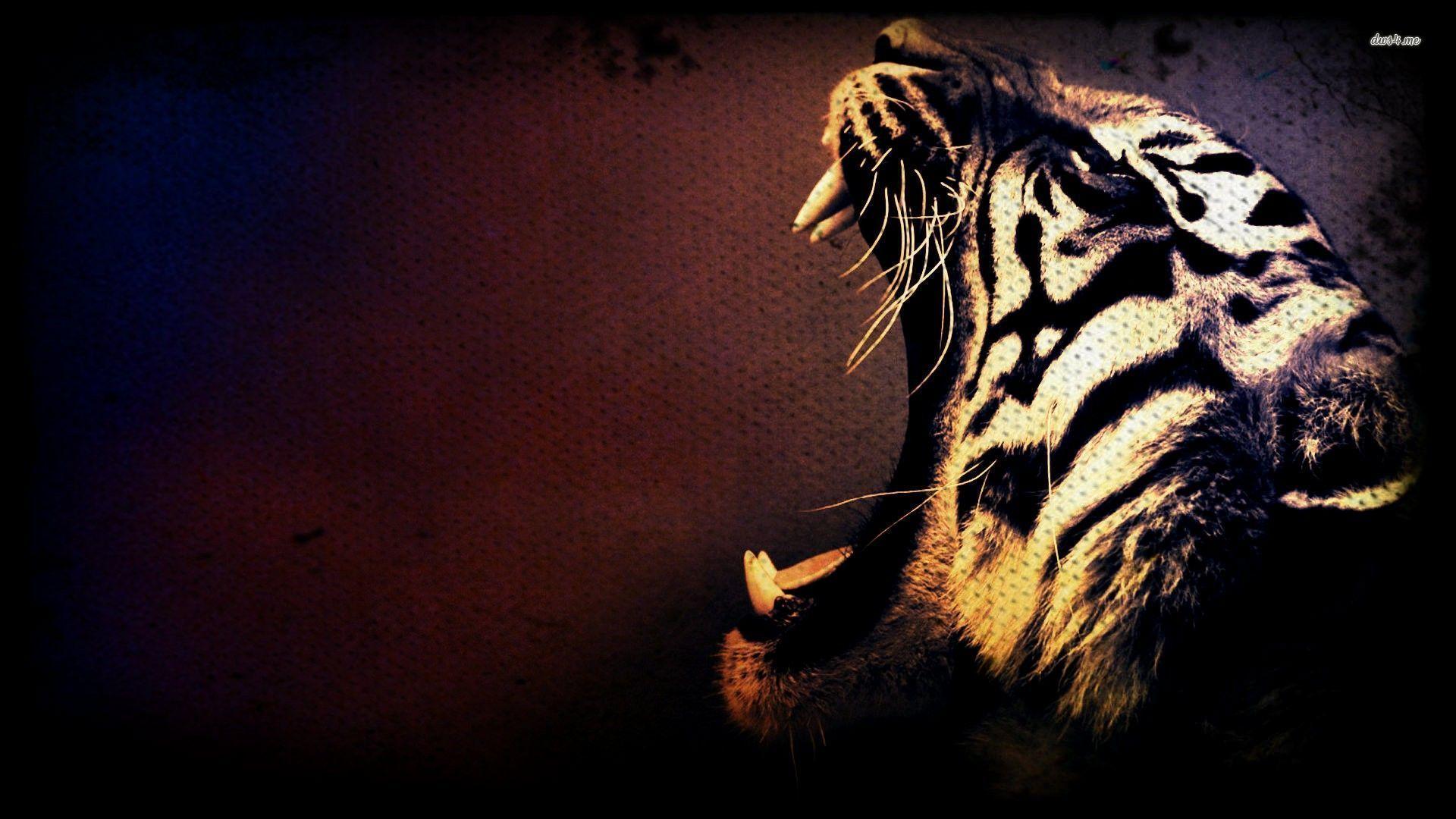Tiger Wallpaper Hd on
