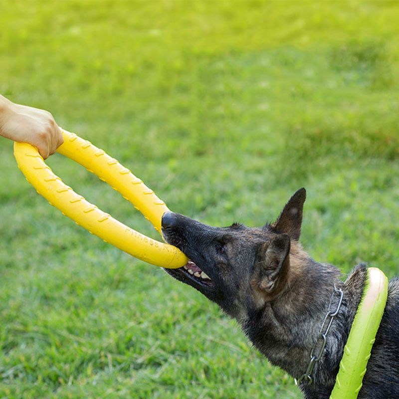 Durable Plastic Dog Toy Interactive For Large Dogs Molar Tooth