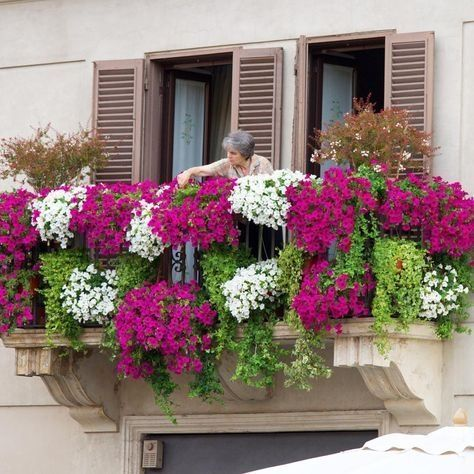 45 Creative Flower Garden Balcony Ideas