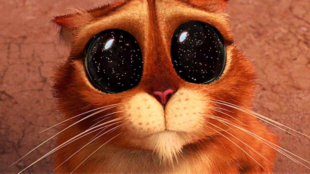 Картинки кота из Шрека с большими глазами (25 фото) | Шрек ...