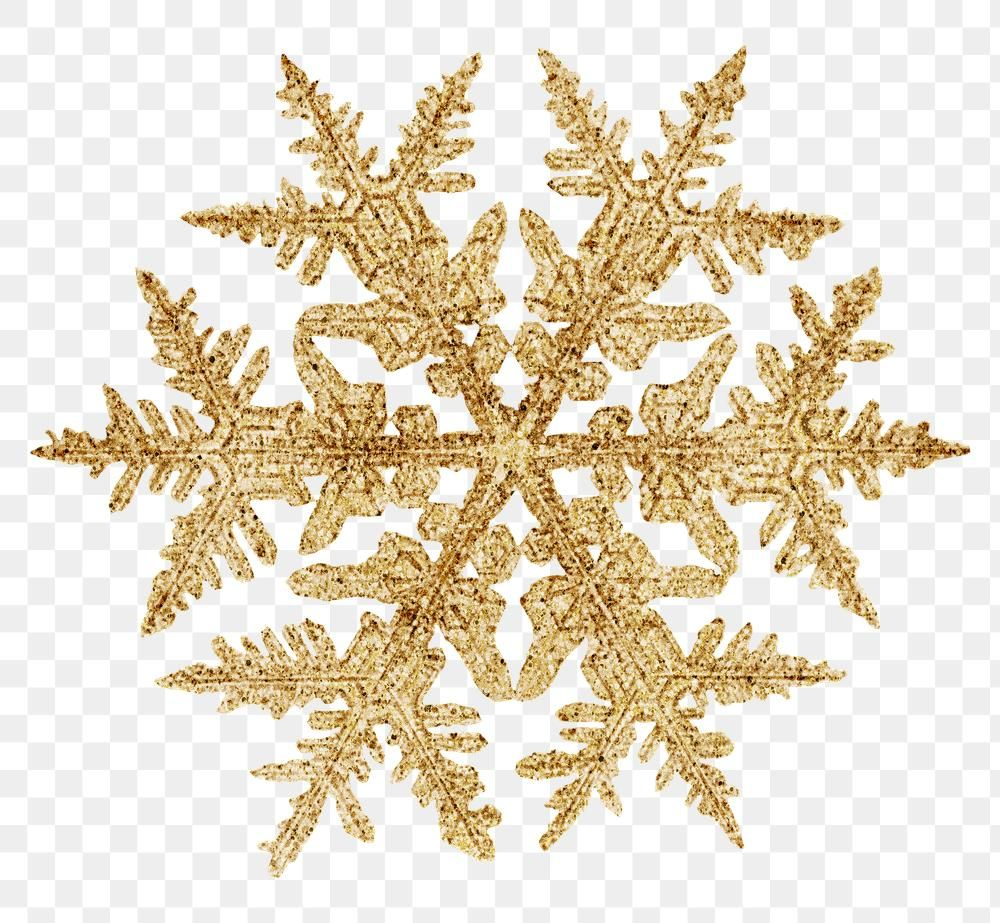 Download Premium Png Of Winter Gold Snowflake Transparent Christmas Gold Snowflake Snowflake Photography Winter Gold