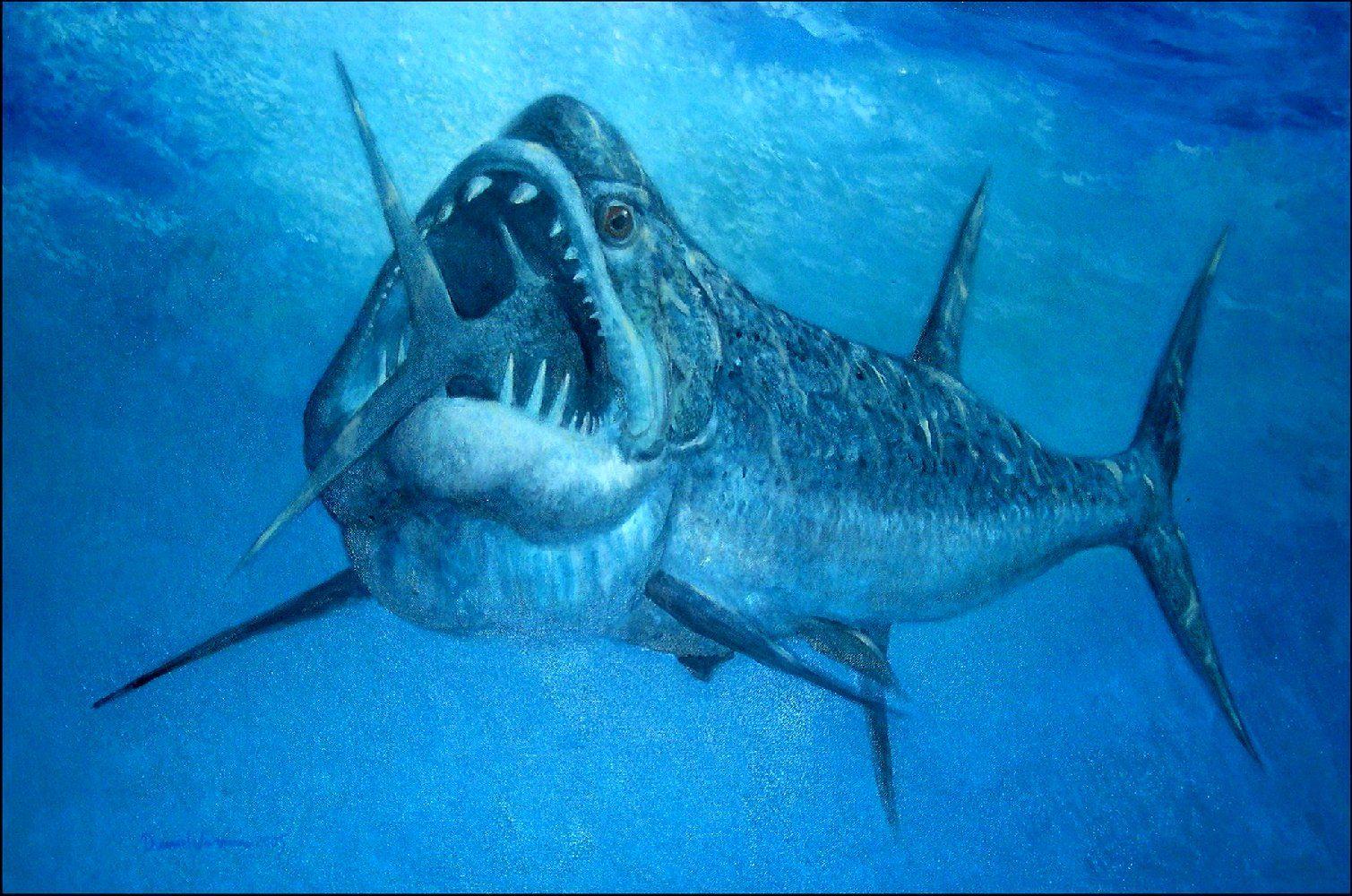 xiphactinus fish - HD1509×1000
