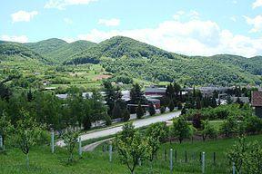 Вујан је планина јужно од Горњег Милановца. Највиши врх је Велики Вујан (856 m). Планина је скоро у целости покривена густом листопадном шумом, осим на обронцима према реци Деспотовици који са обронцима Илијака (510 m) чине Брђанску клисуру.