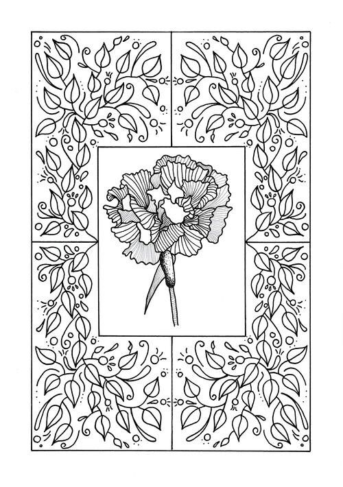 This FREE Coloring Page Features A Carnation As The Focus Point Surrounded By Medley Of Vines And Small Flowers