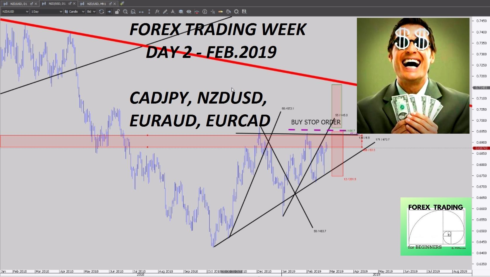 Forex trading for beginners forex trading week day 2