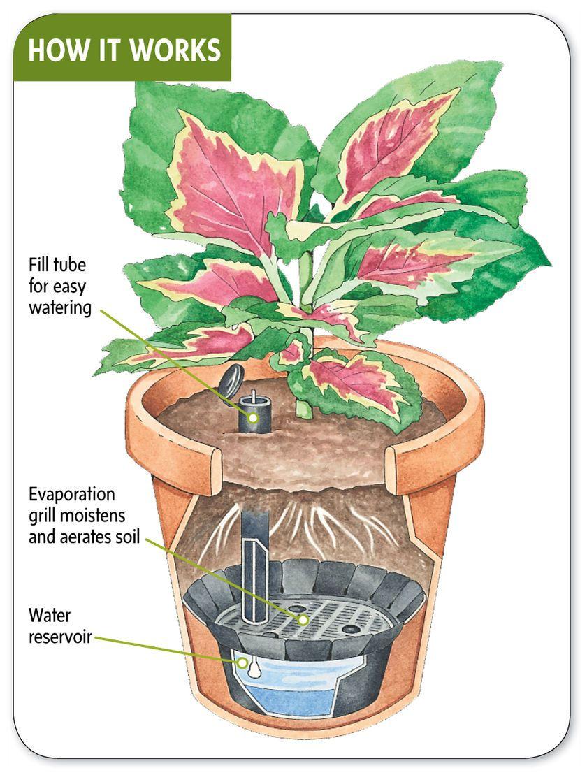 Self Watering Pot Reservoirs Gardeners Com Diy Self Watering Planter Self Watering Plants Self Watering Pots