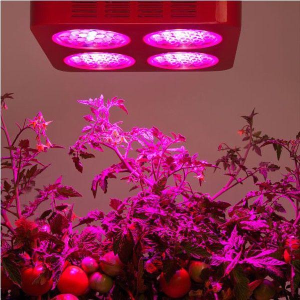 Led Grow Lights For Vegetables