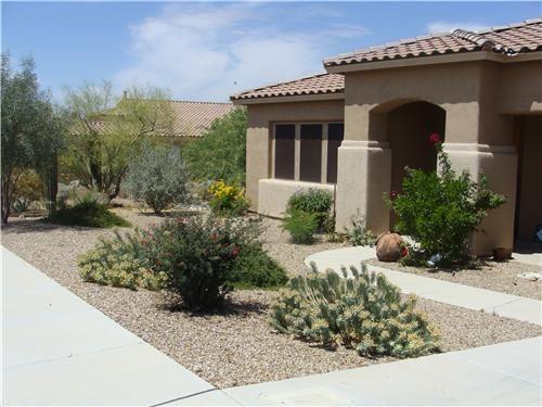 Colorful Desert Courtyard Fall Landscaping Front Yard Desert
