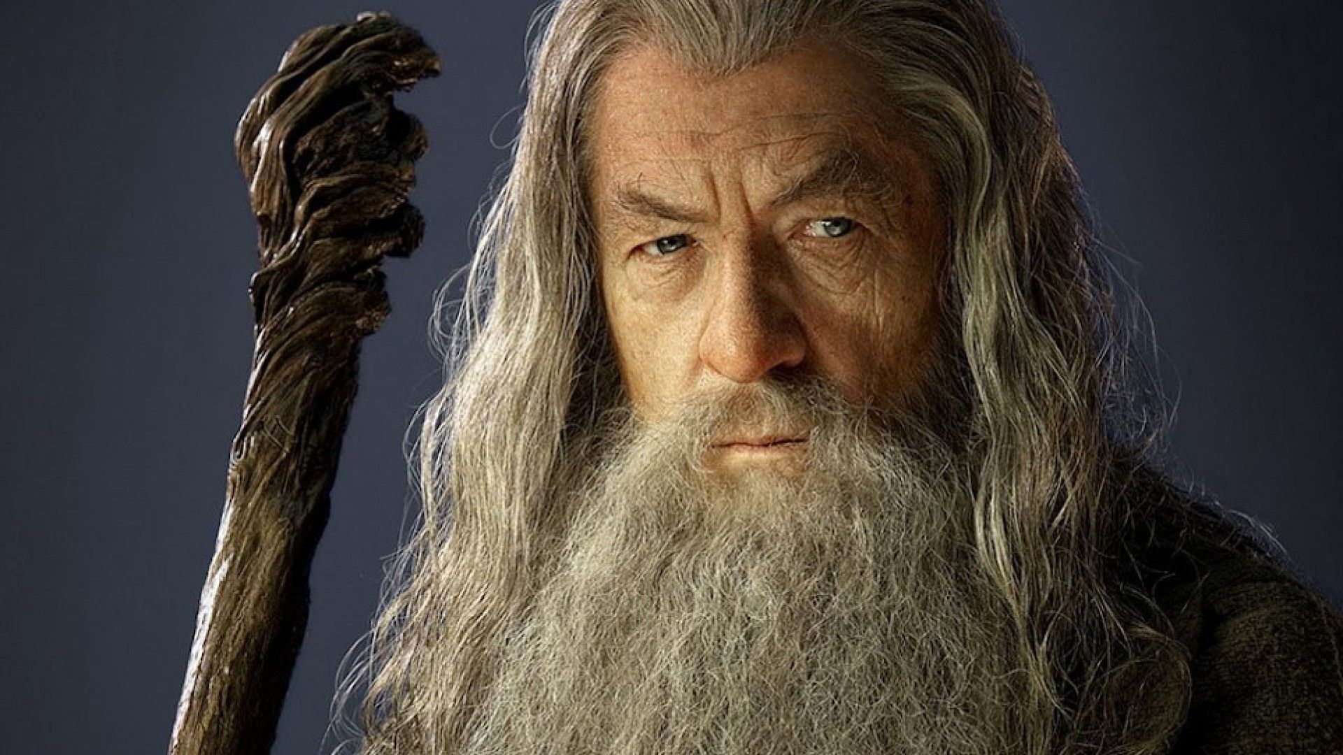 Gandalf the Grey - Gandalf Wallpaper (7018490) - Fanpop | tree ...