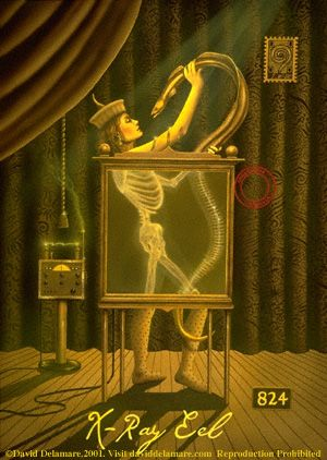 X-Ray Eel
