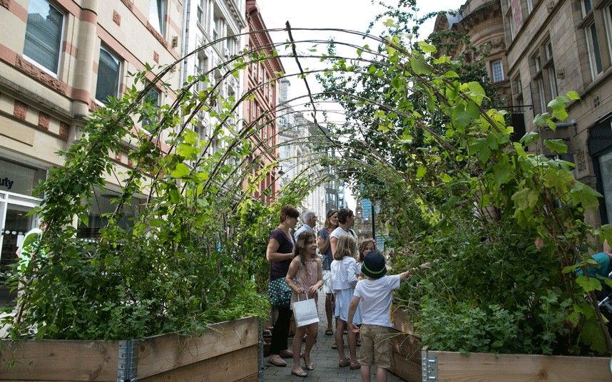 Dig The City Gorgeous Urban Gardens On Show In Manchester