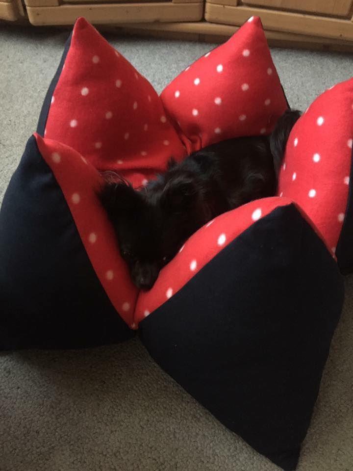 Hundemüde? Auf dem #FLUM Kissen schläft Dein Hund sicher wie ein ...