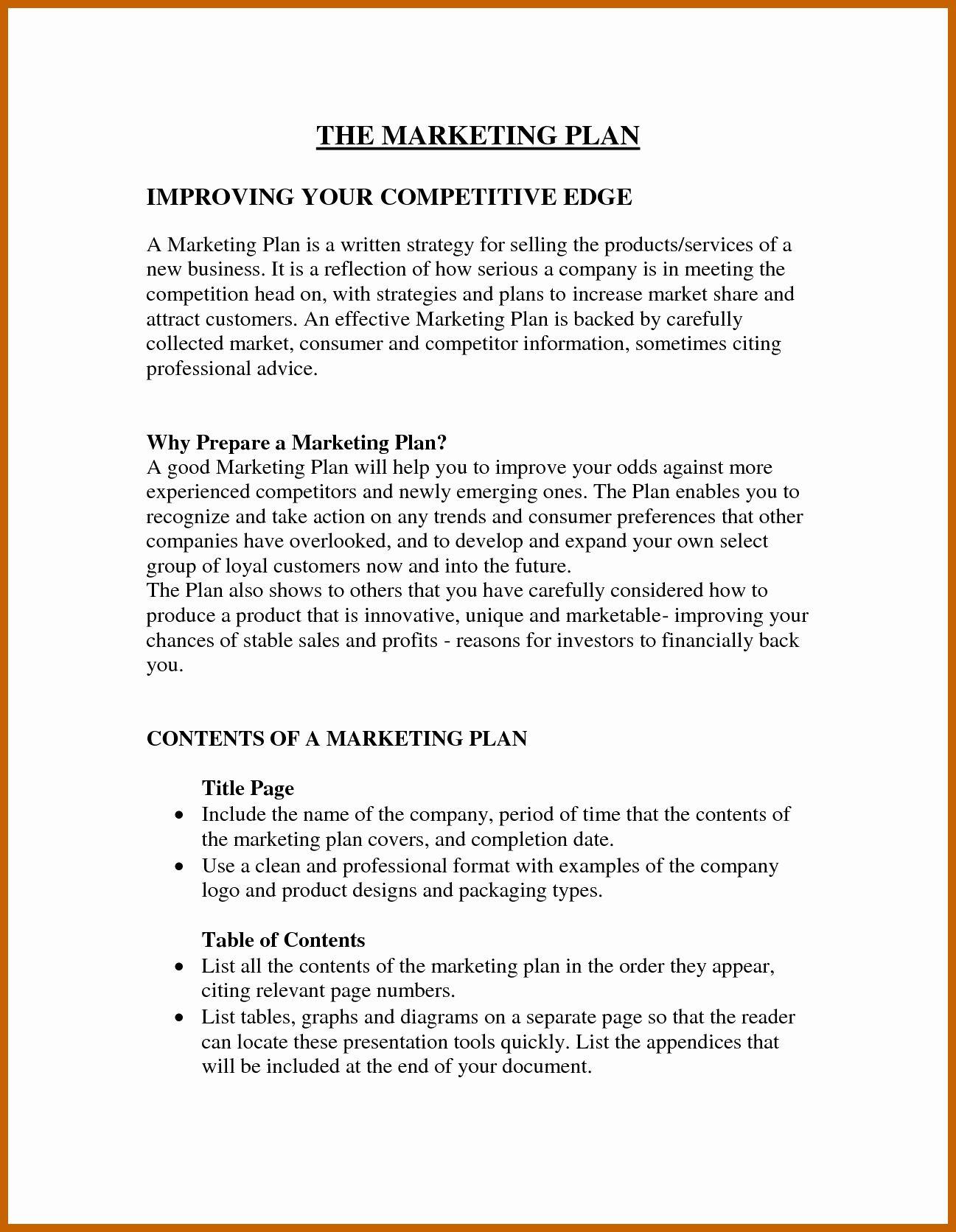 30 Mini Business Plan Template in 2020 Marketing plan