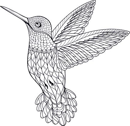 Coloring Page Hummingbird Bird Coloring Pages Coloring Pages Coloring Books