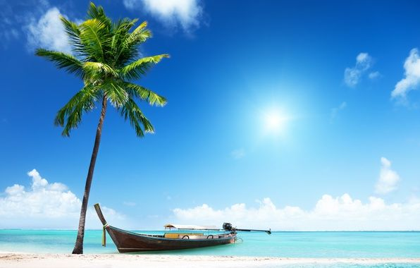 Фото обои песок, море, пляж, солнце, пальмы, берег, лодка ...