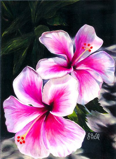 Hibiscus Flowers Pink Bright Hawaiian Tropical By Laura Bell Flower Painting Tropical Flower Tattoos Hibiscus Flowers