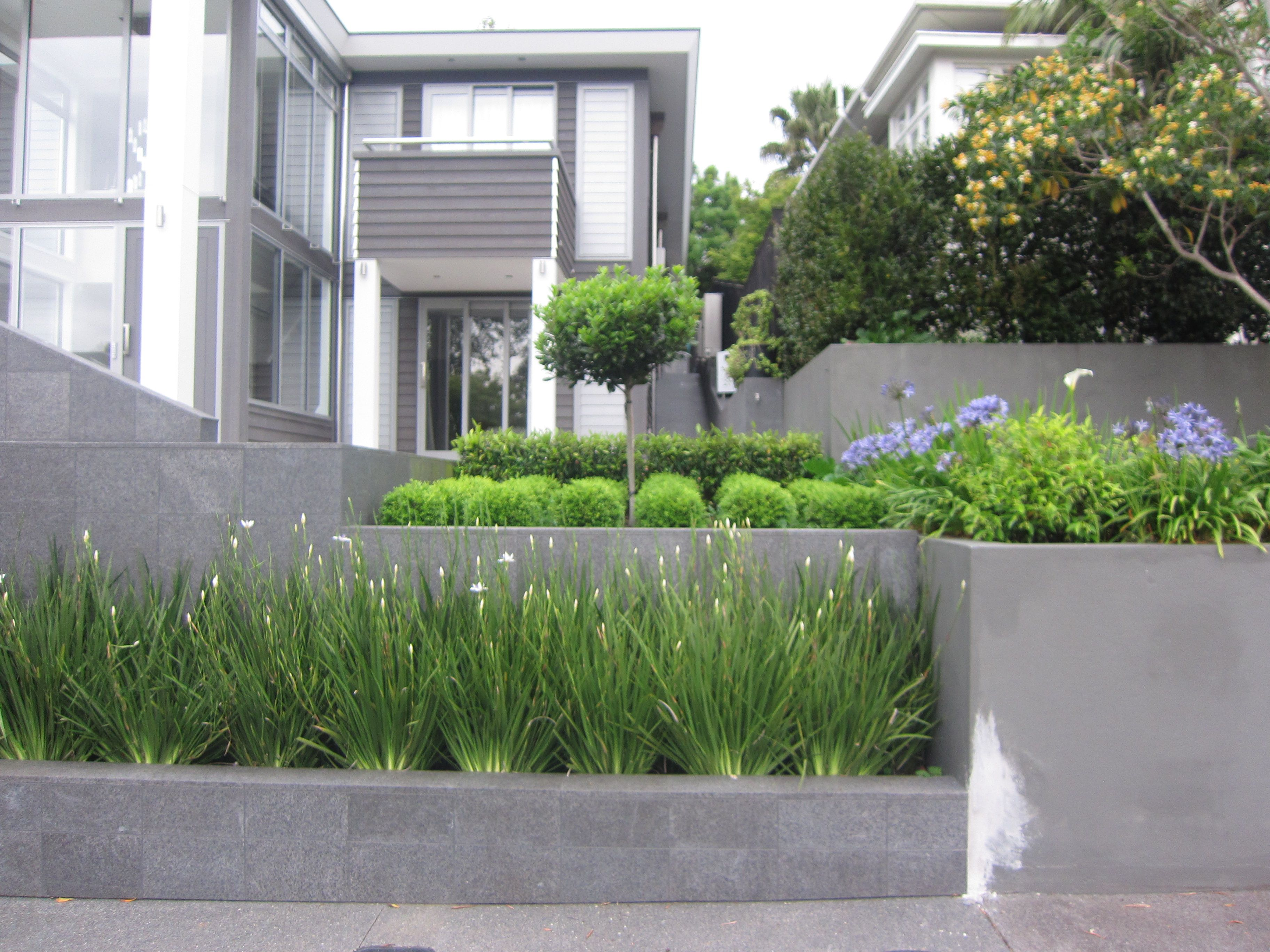 a new house with stylish structured terraced front garden great street appeal