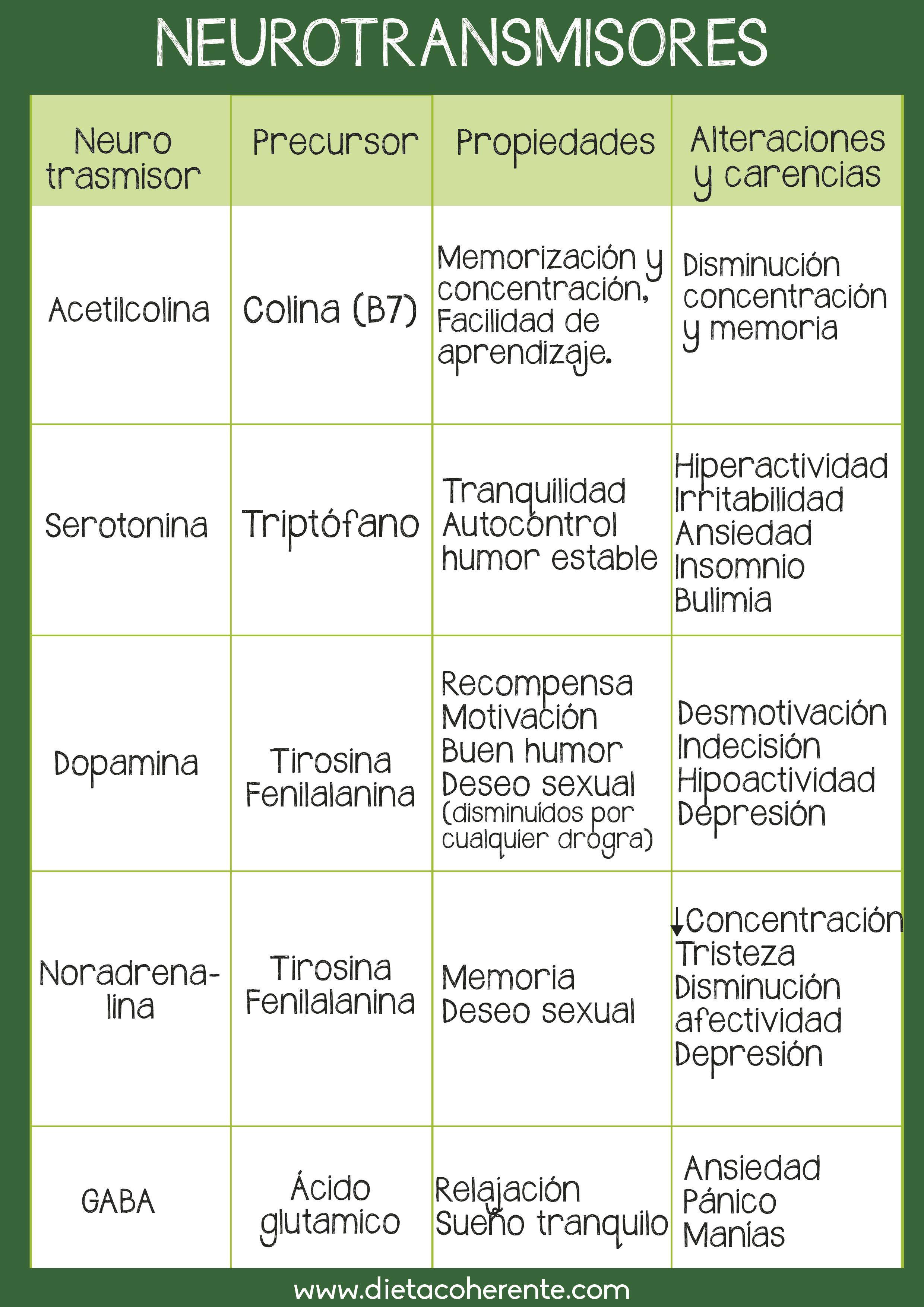 Neurotrasmisores Psicobiologia Neurotransmisores Anatomia Y Fisiologia Humana