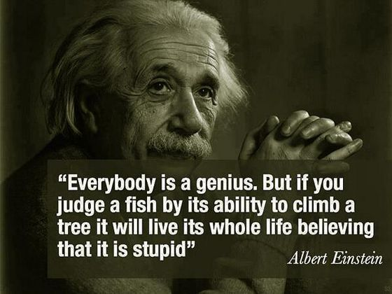 Quote Misquote Hey I Never Said That Albert Einstein