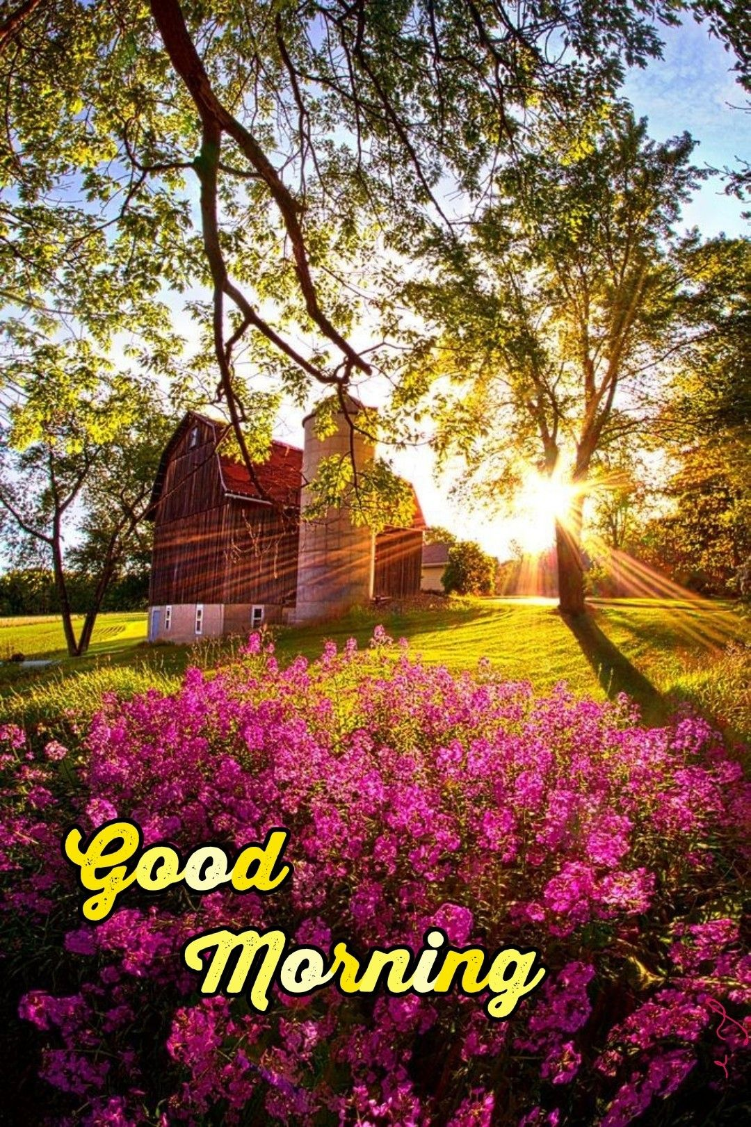 Pin On Good Morning Nature