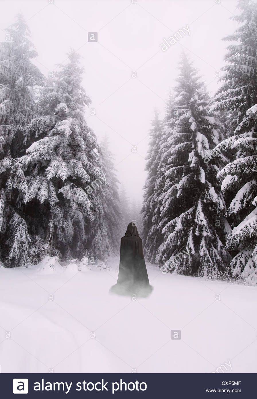 Grim reaper walking in the woods on a snowy day | Book Cover