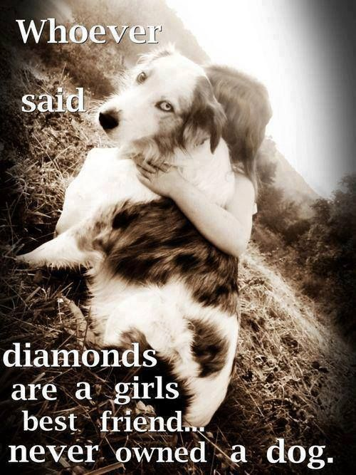 :)) true!! I'd take my dog over a diamond any day!! Can't wait to see her face in 2 weeks!!!!!!! Eeeeekkkkk
