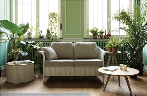urban jungle plante verte et mur vert couleur pastel blog mlc mur vert vert clair et. Black Bedroom Furniture Sets. Home Design Ideas