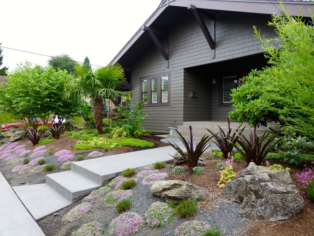 Native Garden Wide Shot Portland Oregon Modern Landscape Design Small Low Maintenance Landscaping Native Garden