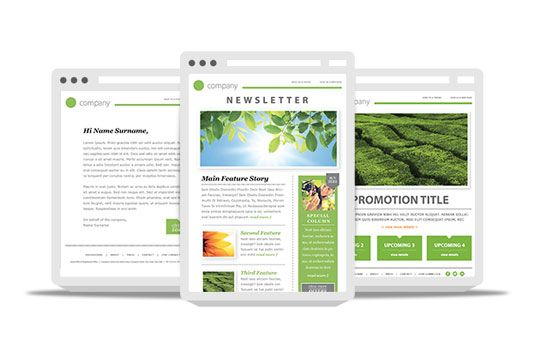 Free Newsletter Templates  Newsletter Templates Template And