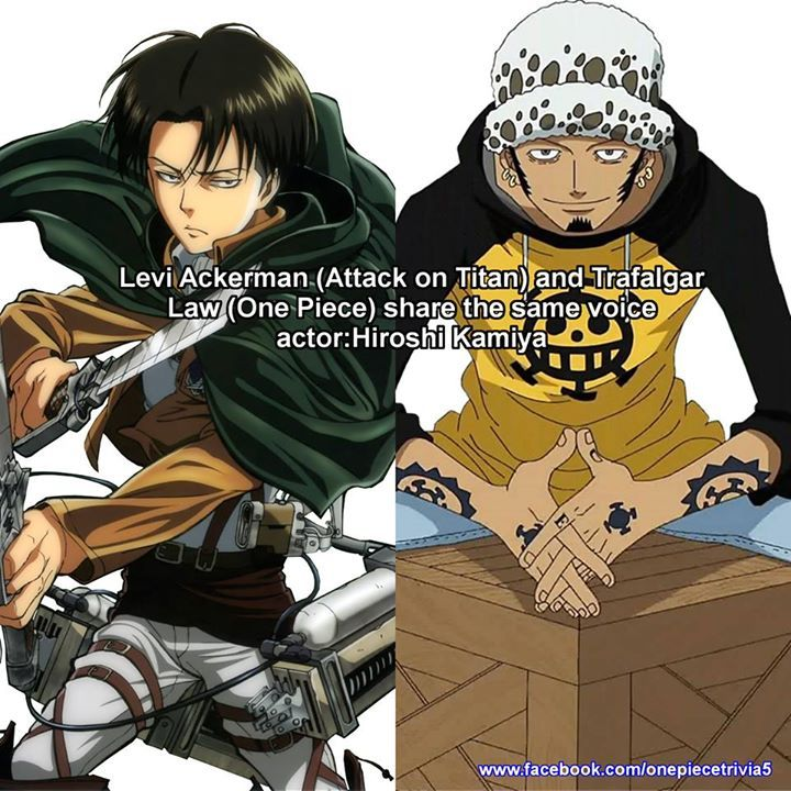 Do you watch Attack on Titan? One piece theories, Anime