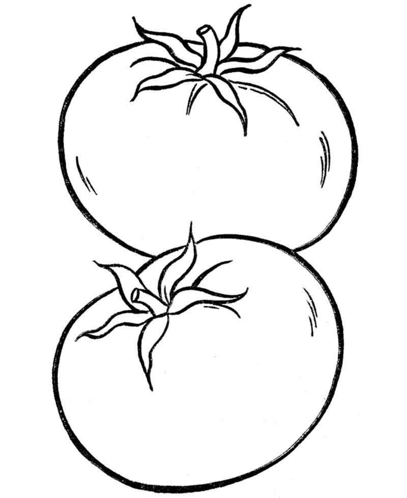 Tomato Vegetable Coloring Pages From Fruits Coloring Pages