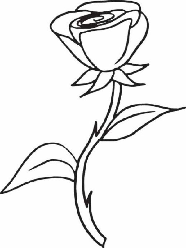 Rose S For Girls 2577 Coloring Pages Printable And Book To Print Free Find More Online Kids Adults Of