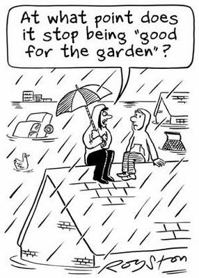 That S Too Much Funny Rain Quotes Gardening Quotes Funny Rain Humor