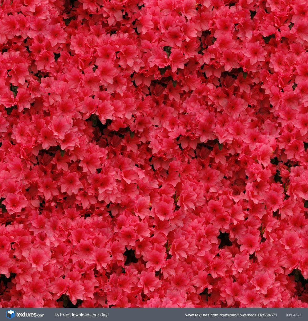 Textures flowerbeds wer pinterest