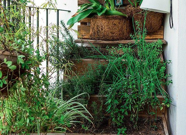 No jardim escalonado, espécies adquiridas em Holambra e vasos com temperos diversos formam a horta vertical (Foto: Edu Castello/Editora Globo)
